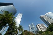 Hong Kong city skyline with trees in daytime in Hong Kong, China, Asia.