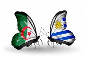 Two Butterflies With Flags On Wings As Symbol Of Relations Algeria And Uruguay