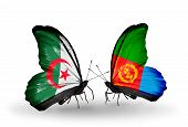picture of eritrea  - Two butterflies with flags on wings as symbol of relations Algeria and Eritrea - JPG