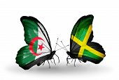 Two Butterflies With Flags On Wings As Symbol Of Relations Algeria And Jamaica