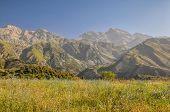 pic of shan  - Scenic peaks in mountain range Tien - JPG