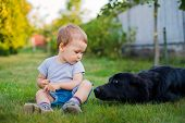 baby sitting on the grass with a dog