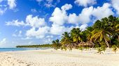 foto of caribbean  - Beautiful caribbean beach on Saona island Dominican Republic - JPG
