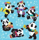 image of panda  - set with cartoon panda bear in winter time  - JPG