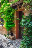 Entrance To The Old Italian House And The Cat