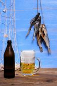 Beer On Blue Background, Dried Rudd Fish