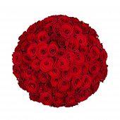 Seventy One Roses