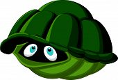 stock photo of turtle shell  - Vector illustration of Cartoon turtle hides in its shell - JPG