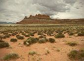Landscape of beautiful desert nature in Utah Southwest USA