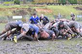 Oviedo, Spain - January 31: Amateur Rugby Match Between The Real Oviedo Rugby Team Vs Crat A Coruna