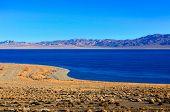 Walker Lake in Nevada