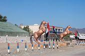 Bronze Statue Of Arabic Horses