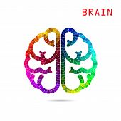 Colorful  Brain Sign