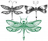 image of dragonflies  - Abstract design dragonfly - JPG