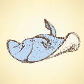 Sketch Cute Numbfish In Vintage Style