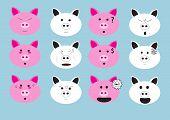 Pig Face Emoji