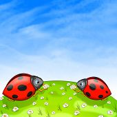 stock photo of oxen  - Ladybird With Ox - JPG