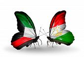 Two Butterflies With Flags On Wings As Symbol Of Relations Kuwait And Tajikistan