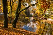 picture of bent over  - Autumn landscape in the heart of Riga - JPG