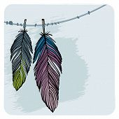picture of feathers  - Two winter feather vector illustration blue and purple black outline feathers hanging on thread with grunge dust background - JPG