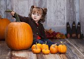 foto of gourds  - Adorable toddler surrounded by giant pumpkins - JPG