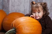 pic of gourds  - Adorable toddler with giant pumpkins - JPG
