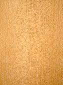 Nature Beech Wood Texture