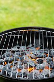 picture of blisters  - Garden grill with blistering briquettes - JPG