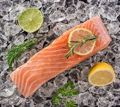 pic of salmon steak  - Salmon steak on crashed ice - JPG