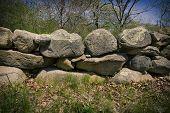 pic of martha  - Stone fence on Martha - JPG