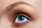 foto of human eye  - Macro image of blue  human woman eye with make up - JPG