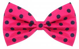foto of bow tie hair  - Hair bow tie pink with dark blue dots - JPG
