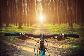 image of biker  - Mountain biking down hill descending fast on bicycle - JPG