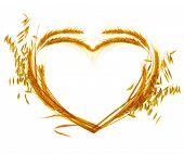 Wheat Heart design over white