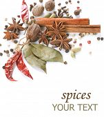 foto of bye  - Spices border - JPG