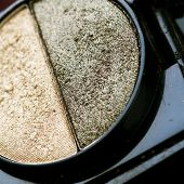 Eye Shadow Closeup.Professional Make-up