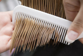 foto of hair comb  - Hairdresser combing through in hair salon - JPG