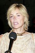 LOS ANGELES - JUN 14: Sharon Stone at the Rock-N-Reel event held at Culver Studios in Los Angeles, C