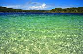 foto of mckenzie  - Clear waters of McKenzie on Fraser Island - JPG