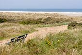 Dutch Coast With Dunes And the Beach