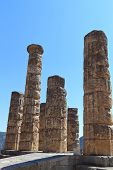 Temple of Apollo at Delphi oracle