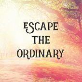 Quote - Escape the ordinary poster