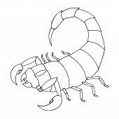 Scorpion Coloring Book. Vector Outline Illustration Scorpio poster