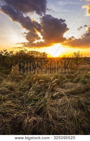 poster of Sunset In Meadow Nature Landscape. Meadow Landscape In Sunset. Nature Landscape. Sunset In Meadow La