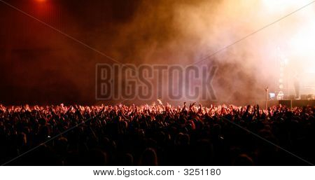 poster of Big Crowd At Music Festival