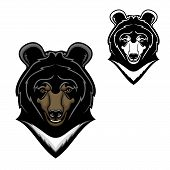 Bear Animal Head Vector Cartoon Of Himalayan Bear Mascot Design. Wild Predatory Mammal With White Ch poster