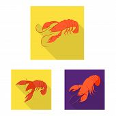 Isolated Object Of Appetizer And Seafood Sign. Set Of Appetizer And Ocean Vector Icon For Stock. poster