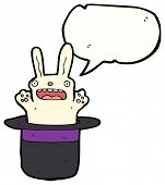 funny white rabbit in hat cartoon