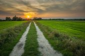 Dirt Road Through The Green Fields Towards The Sunset, Nowiny, Eastern Poland poster