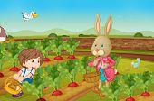 Rabbit and boy picking vegies